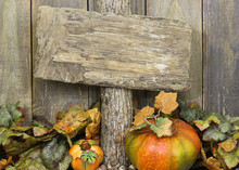 Blank Rustic Sign With Autumn Decor
