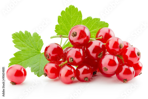 Plakaty czerwone  red-currants-isolated-on-the-white-background