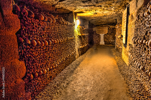 Recess Fitting Paris Catacombs of Paris - Skulls and Bones in the Realm of the Dead -3