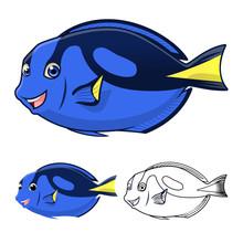 High Quality Regal Blue Tang C...