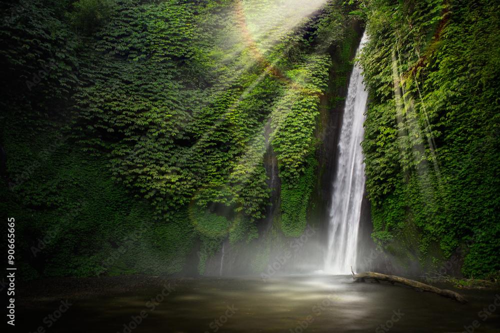 Fototapeta Waterfall in the tropical forest. (Munduk, Bali, Indonesia.)