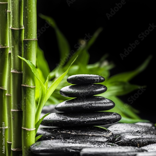 Recess Fitting Zen zen basalt stones and bamboo