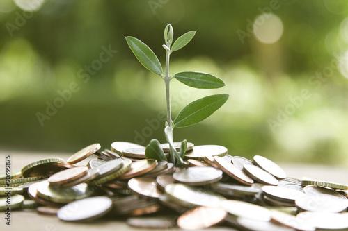 Fotografía  concept of saving, economy and finance