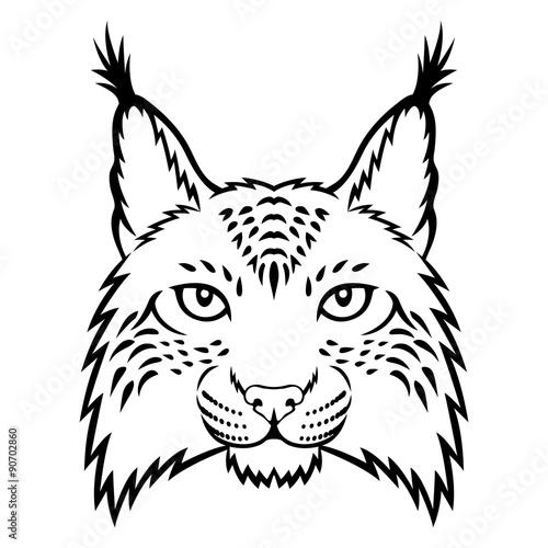 Poster Croquis dessinés à la main des animaux Lynx