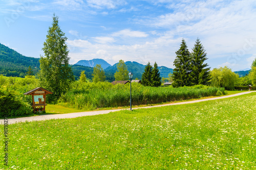 Poster Lime groen Rural walking path along green meadow with traditional countryside house in background, Weissensee lake, Alps Mountains, Austria