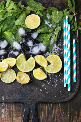 Fotografering  Ingredients for mojito