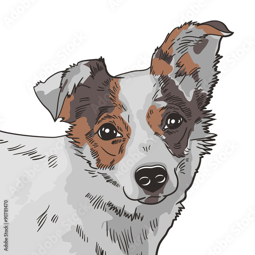 wektorowa-ilustracja-pies-czarny-i-bialy