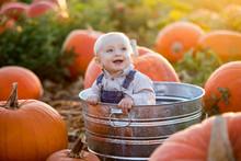Little Boy Pumpkin