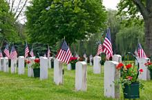 American Flags On Veteran Tomb...