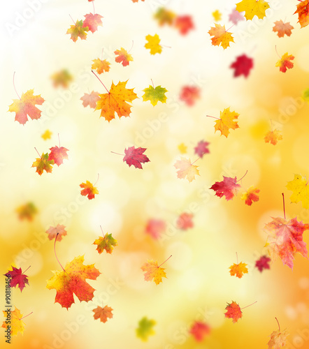 autumn background Obraz na płótnie