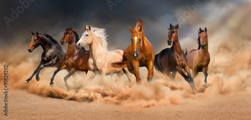 Fotografia, Obraz Horse herd run in desert sand storm against  dramatic sky