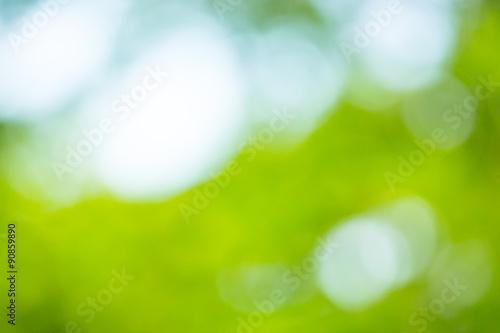 Foto op Plexiglas Groene Abstract blur green leaf background