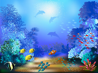 FototapetaThe underwater world with fish and plants