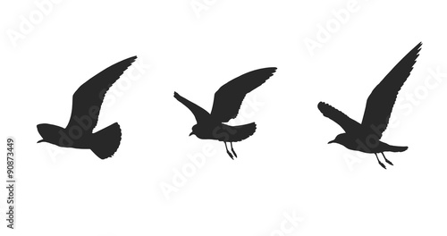 silhouette of seagulls in flying on a white background. Wallpaper Mural