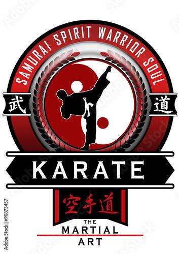 Karate escudo vermelho - 90873457