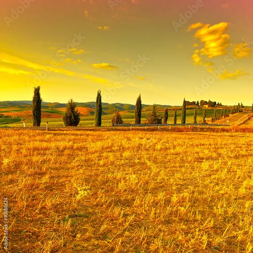 Deurstickers Oranje eclat Tuscany