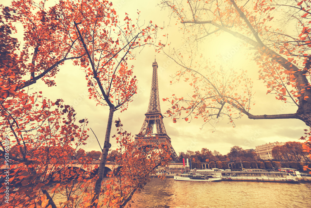Fototapety, obrazy: The eiffel tower in paris