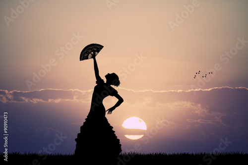 flamenco at sunset Wallpaper Mural