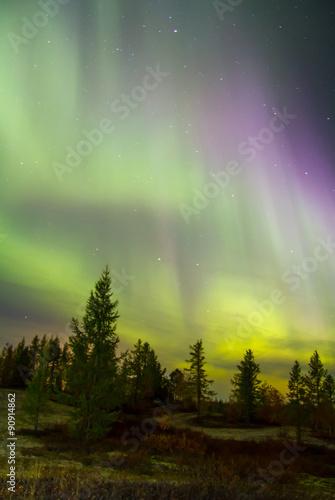 Photo  Northern lights (Aurora Borealis)