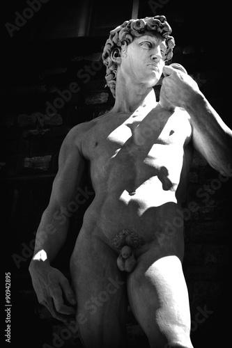 Fotografie, Obraz  Statue Florenz
