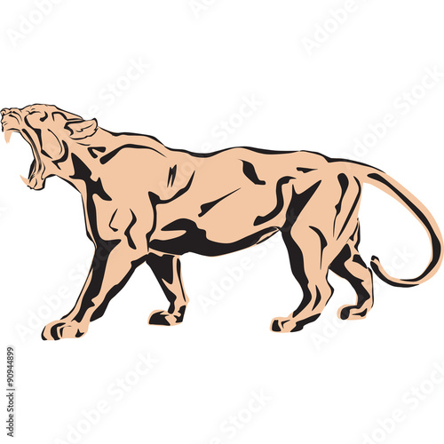 Photo  Vector illustration of a big lion