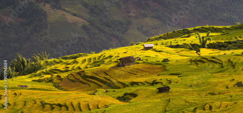 Keuken foto achterwand Rijstvelden Rice fields on terraced