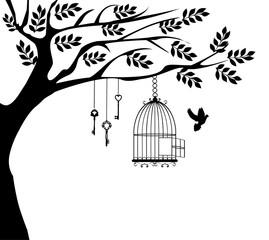 Fototapeta Drzewa Bird Cage