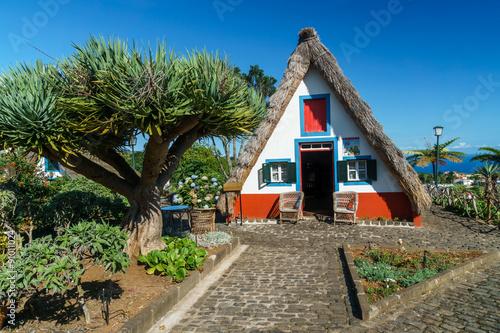 Fotografie, Obraz  Tradiční dům z Madeiry