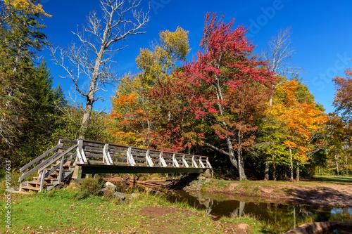 Fotobehang Zwavel geel Nova Scotia Autumn Bridge