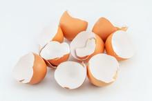 Eggshells On White Background