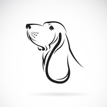 Vector Of A Basset Hound Head On White Background. Pets. Animals.