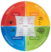 Diagramme 4 Styles Apprentissage / Communication - NLP - Coach