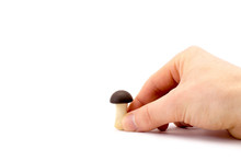 Hand Holds A Small Chocolate M...