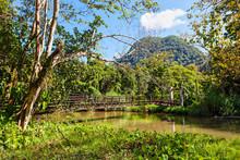 Tham Pla Cave