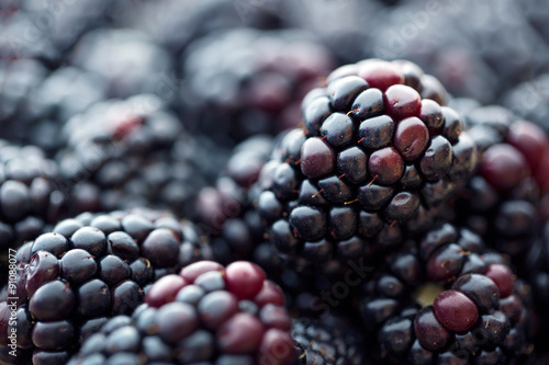 Fotografija  Blackberries