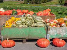 Thanksgiving Produce Display