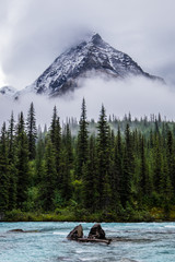 Mt Robson peeks through clouds over Robson River in Robson Provi