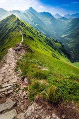 Fototapeta Popularne Footpath in the mountains in Poland