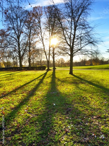 sunset in autumn park in Marlow Wallpaper Mural