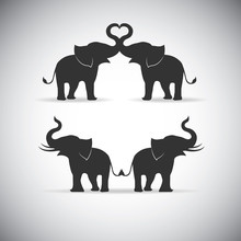 Silhouette Lovers An Elephant