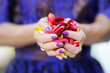 Hand of a woman full of rose petals