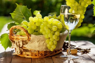 Plakat White wine and grapes