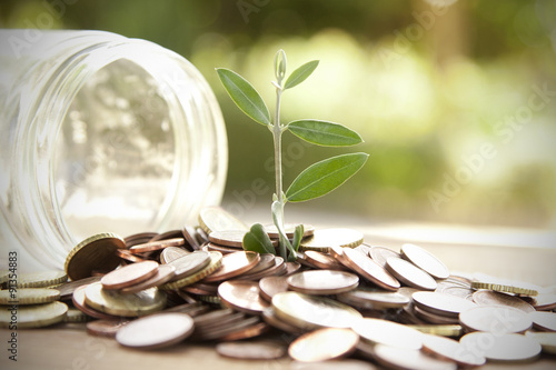 Fotografía  pot with coins saving concept