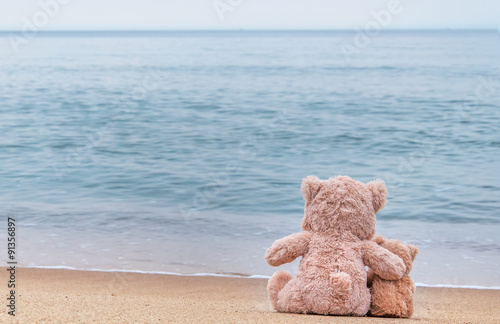 Fotografie, Obraz  Teddy bears sitting on the beautiful beach with love. Concept ab