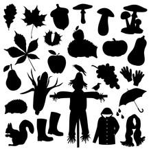 Set Of Fall Items