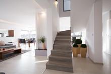 Stylish Modern Stairs