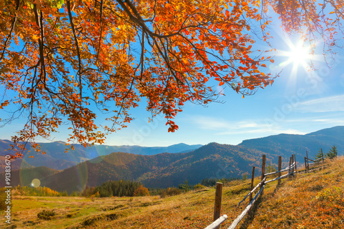 Photo sur Aluminium Piscine Morning Autumnal Landscape - yellow leaves over mountains