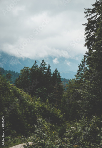 Fototapeten Wald Austrian Alps