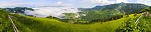 Panorama Of Green Slopes In Tara Mountain