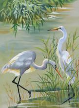 Heron Birds Watercolor Vector Illustration